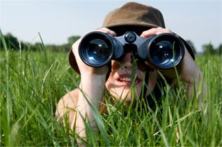 Observando (Foto: Reprodução)