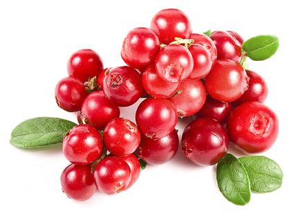 Cranberries - Oxicoco