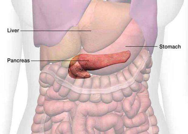 Biossensor pode promover diagnóstico mais rápido de câncer de pâncreas