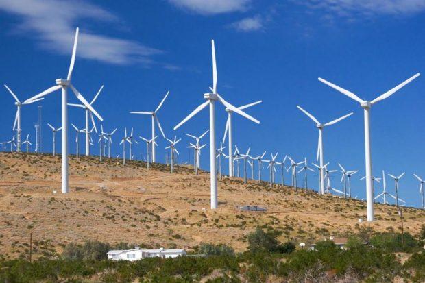 Empresa quer vender fatias de energia eólica!