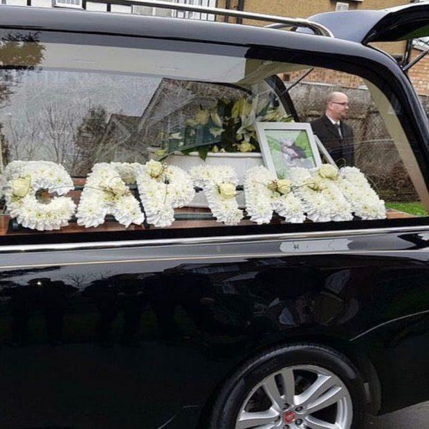R$ 20 mil em funeral de cachorro de estimação? Entenda!